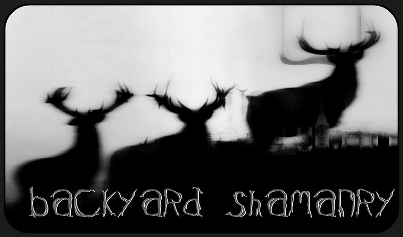 Back Yard Shamanry