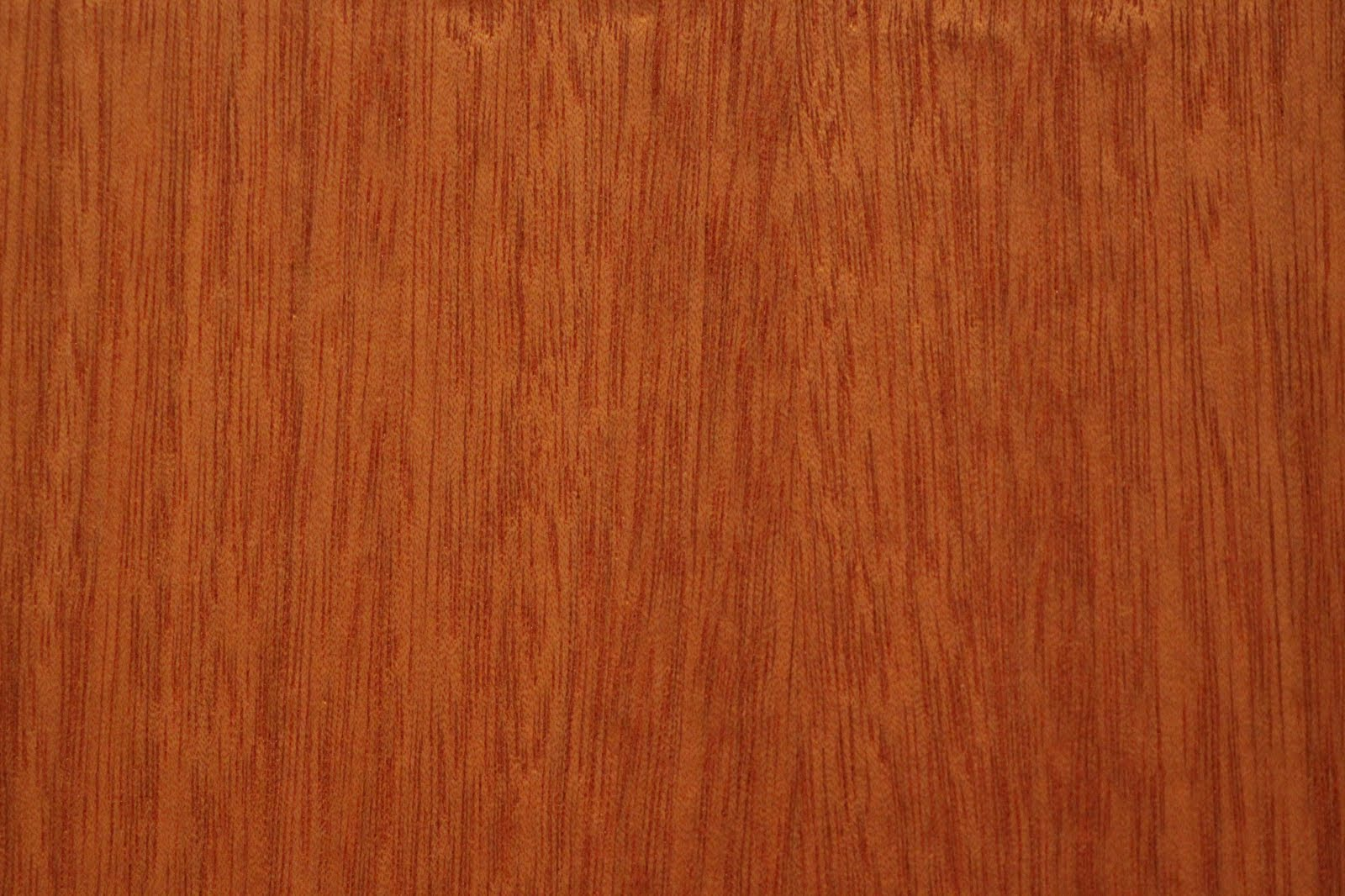 Wooden Texture Wood: Etiketter: Wood ...