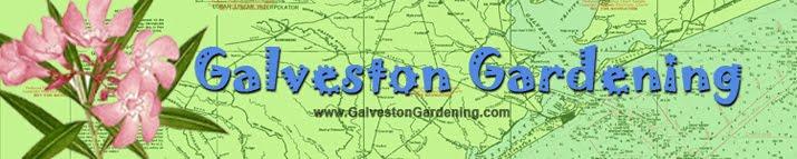 Galveston Gardening