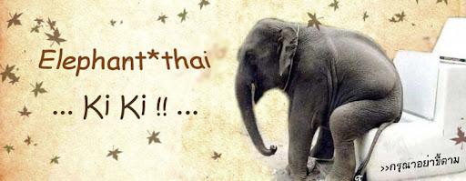 ...  ขี้ ขี้ !! (ช้าง)  ...