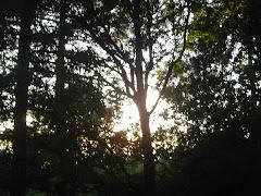 Samedi 20 - le soleil se couche