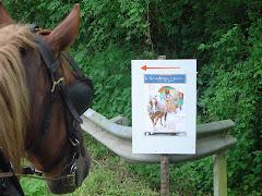 Un cheval qui savait lire...