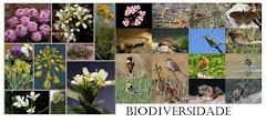 2010-Ano Internacional da Biodiversidade