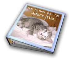 Make Your Cat ADORE You