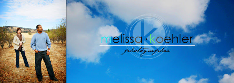 Melissa Koehler Photography