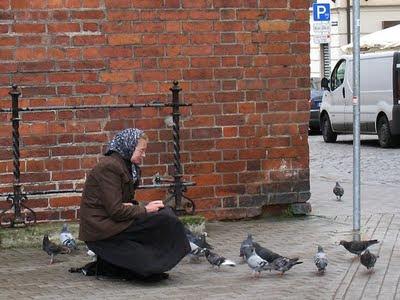 Pigeon Lady Latvia