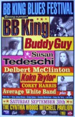 bb king/buddy guy