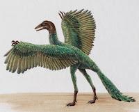 http://2.bp.blogspot.com/_nwPLuC5_hIo/TEEhQ0SDcmI/AAAAAAAAAE4/xc7D6Zs9jlY/s1600/archaeopteryx.jpg