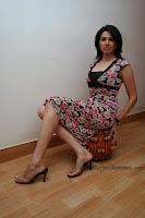 Nikita Anand, bollywood actress, Miss India 2003