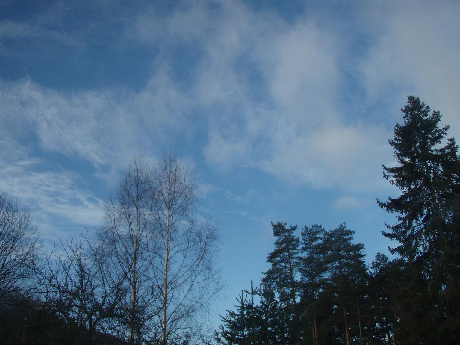 [Blue+Sky+7+march.JPG]