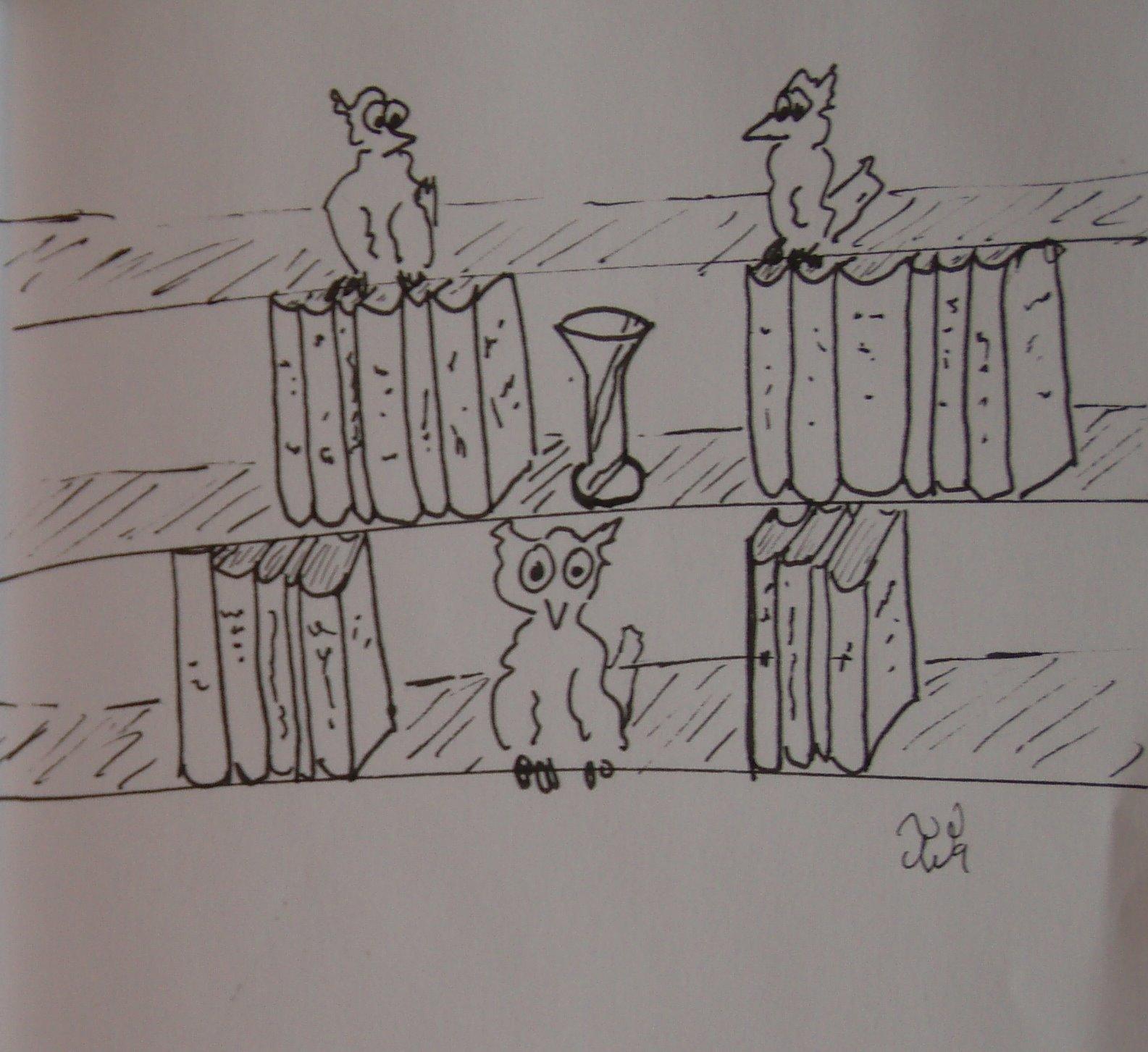 [Owls+in+Library.JPG]