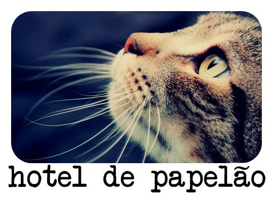 Hotel de Papelão