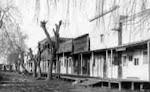Alvarado History