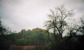zi ploioasă