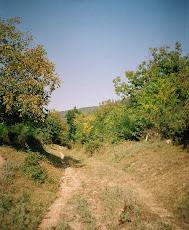 La Sărăcsău, 6 sept. 2008