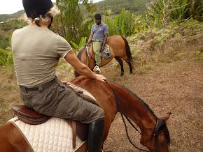 À cheval à Maurice…