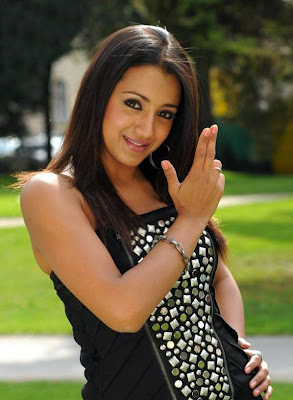 trisha hot photo trisha spicy