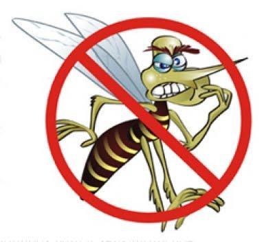 Dengue, tô fora: