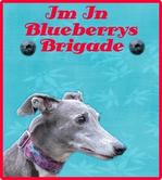 Blueberry's Brigade
