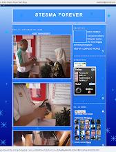 STESMA forever blog