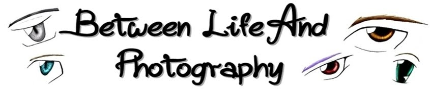 Between Photography and Real life