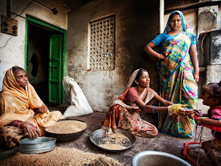 Fantastic Photo of Women sorting Wheat in India