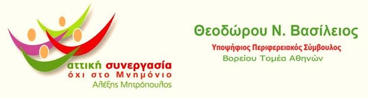 ΒΑΣΙΛΕΙΟΣ Ν. ΘΕΟΔΩΡΟΥ
