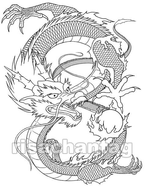dragon tattoo wallpaper