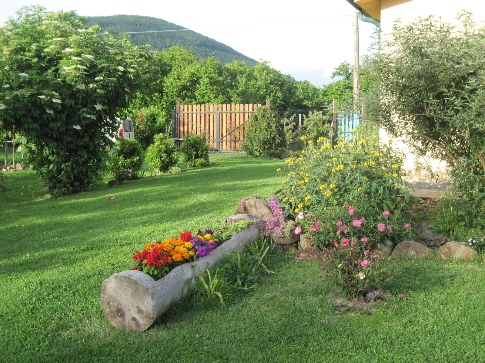 Il giardino sul lago colori di giugno for Giardinaggio e fiori