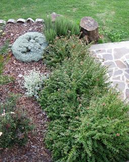 Il giardino sul lago abelia - Bombolone gas casa ...