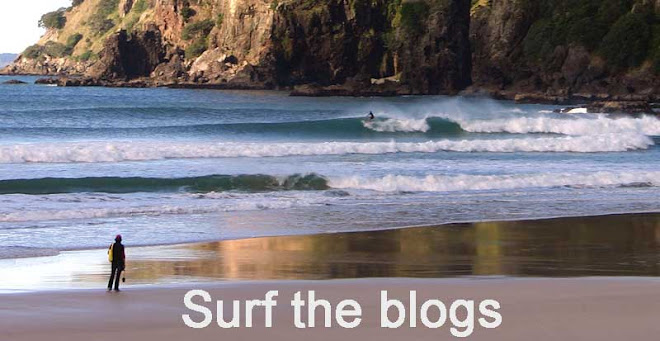 Surf the blogs