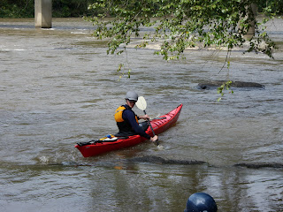 Sea kayaker on the French Broad