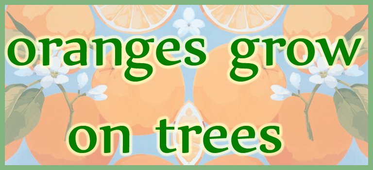 Oranges Grow on Trees