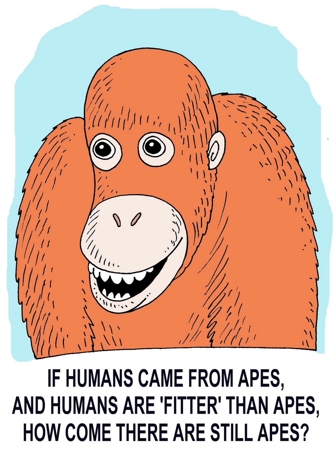 [apes.jpg]