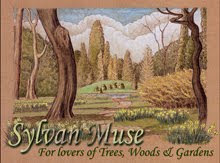 Sylvan Muse Spring Header