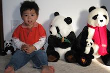My panda boy