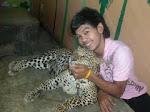 Bermain dengan Macan