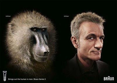maimuta langa om, evolutie, darwin