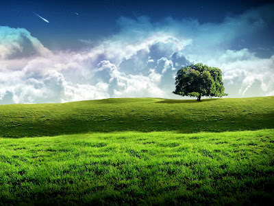 hd wallpapers for nature. hd nature wallpaper 13 20 Beautiful HD Nature Desktop Wallpapers
