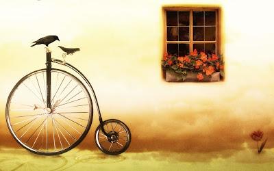 bicicleta pasare fereasta ra