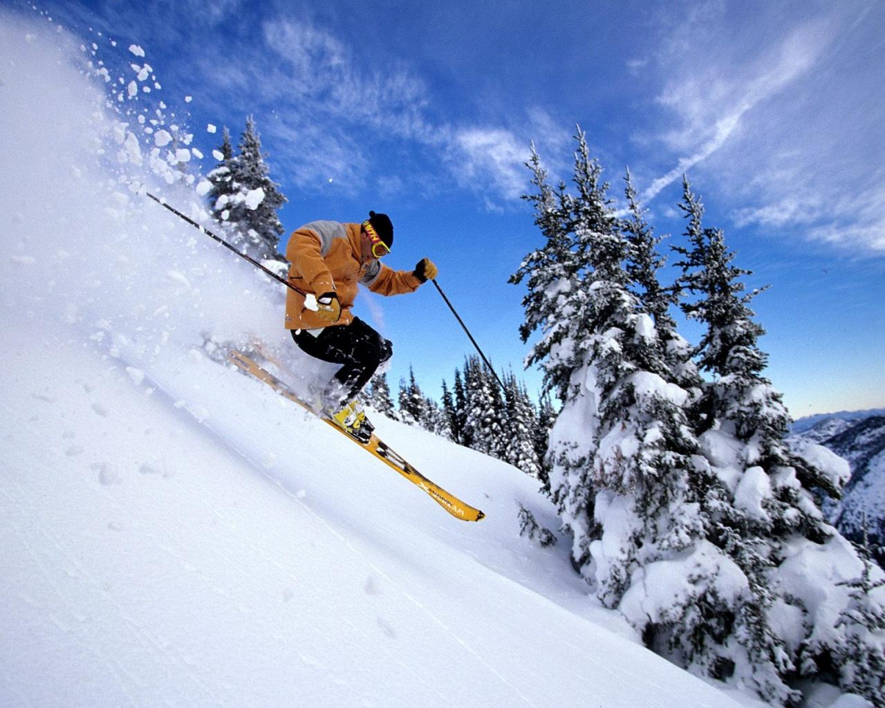 http://2.bp.blogspot.com/_oCEA7DBXyqs/TQDqs-JsbeI/AAAAAAAAD9c/jrUiTBLMXpk/s1600/skiing-through-snow-wallpapers_9207_1280x1024.jpg