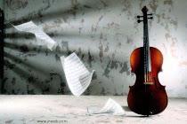 music-my-liFe