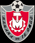 Escudo MTD - 2010