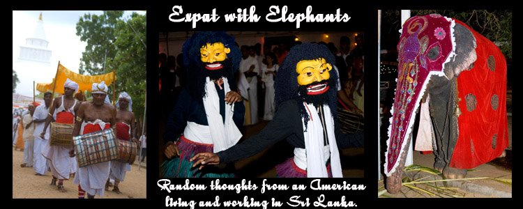 Expat with Elephants