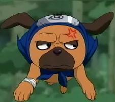 Tu personaje favorito de anime 454586642973764196234naruto_pakkun0018
