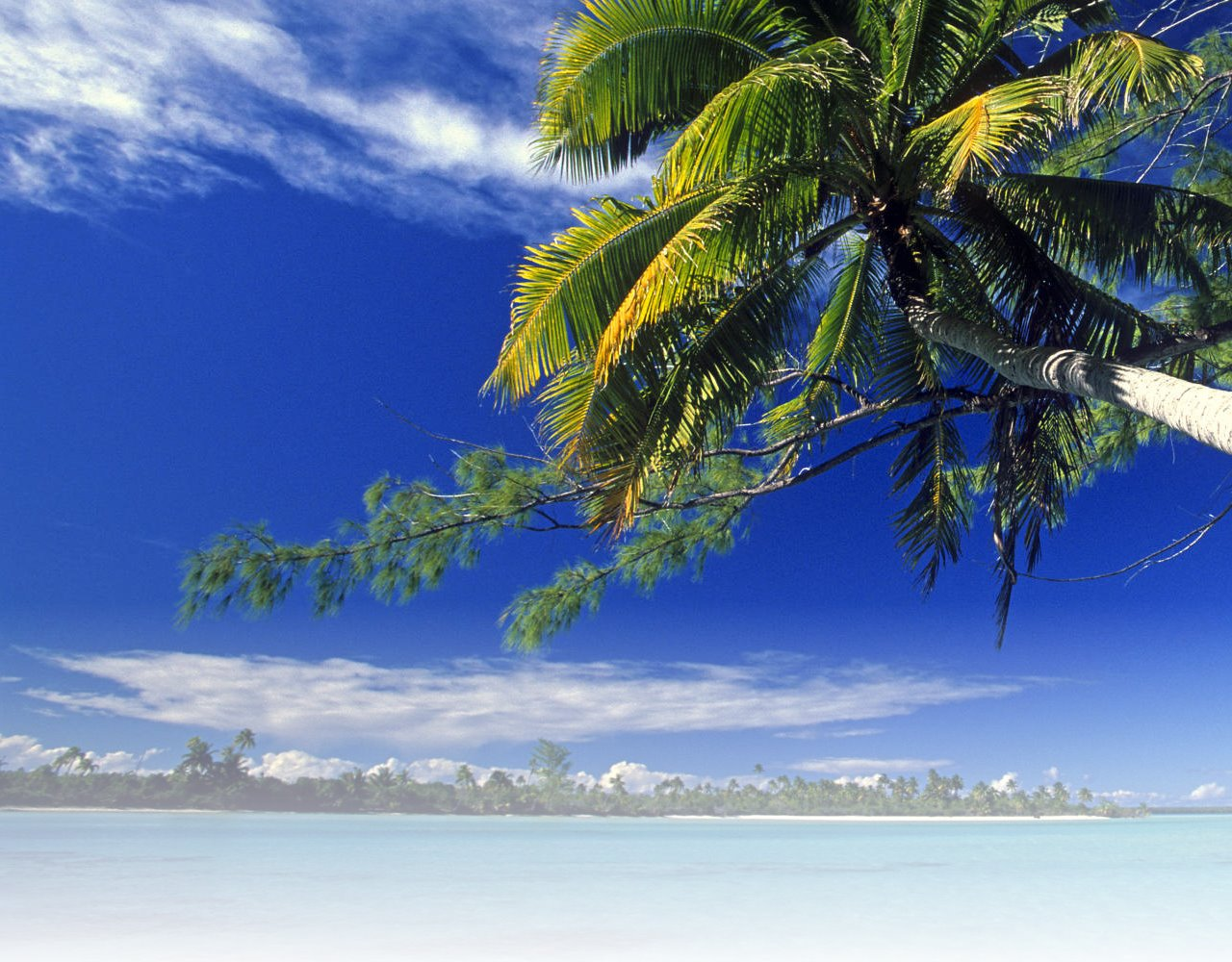 Tropical vacation related keywords tropical vacation for Tropical places to travel