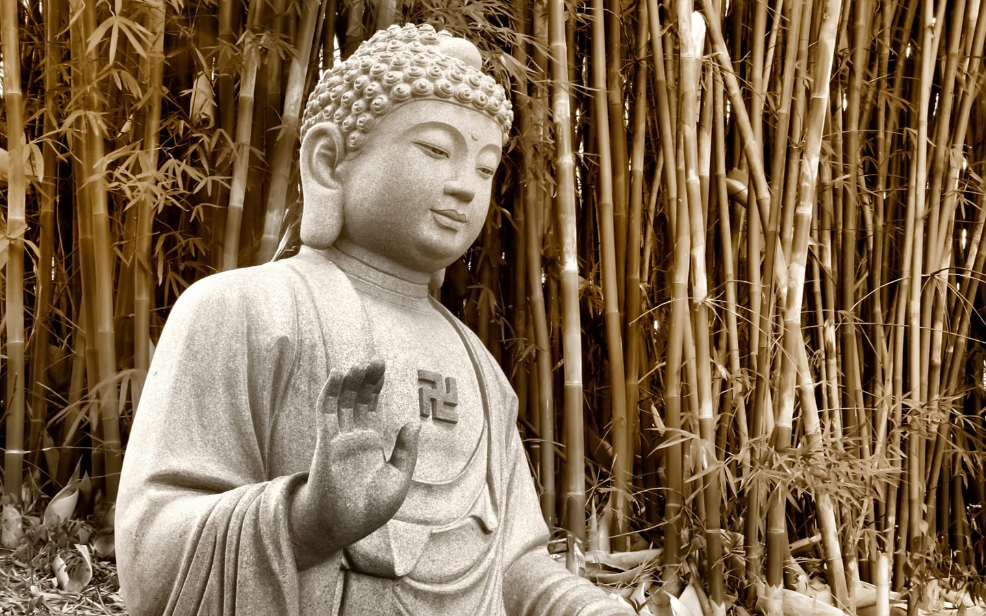 enlightened on buddhism The english term enlightenment is the western translation of the term bodhi,  awakening, which was popularised in the western world through the 19th  century.