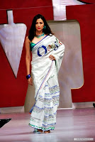 (G)oogle Themed Saree