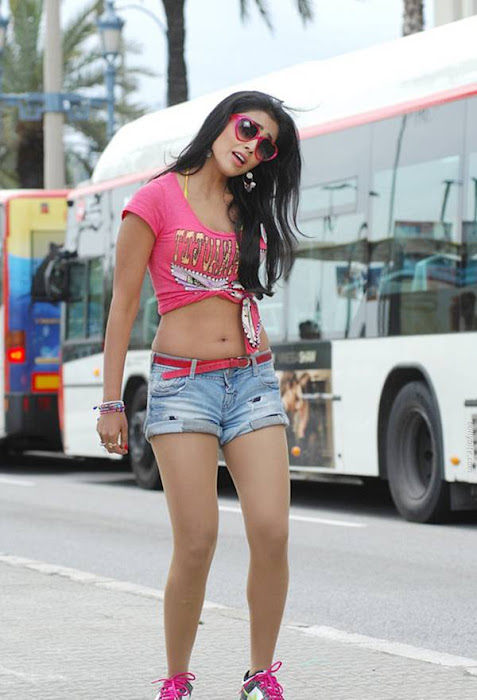 shriya saran posing photo gallery