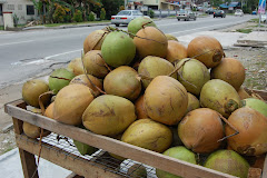 GOING  COCONUTS